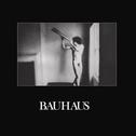 Bauhaus - In The Flat Field (Remastered)