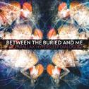 Between The Buried And Me - The Parallax II-The Future Sequence