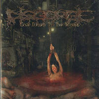 Disgorge (Mex) - Gore Blessed To The Worms