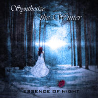 Essence Of Night - Synthesize The Winter