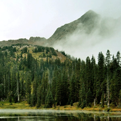Evergreen Refuge - Evergreen Refuge
