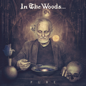 In The Woods - Pure
