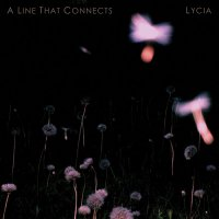 Lycia - A Line That Connects