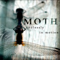Moth - Endlessly In Motion