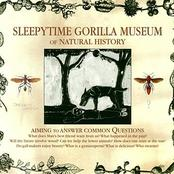 Sleepytime Gorilla Museum - Of Natural History