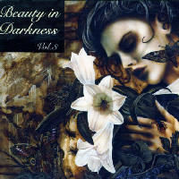 Various Artists - Beauty In Darkness Vol 3