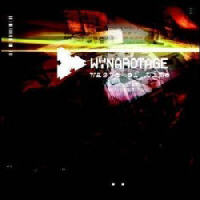 Wynardtage - Waste Of Time